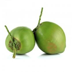 Pipa de coco en Quito y Valles