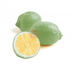 limón meyer a domicilio en QUITO